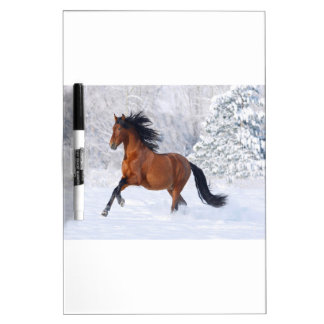 Horse Play In The Snow Dry Erase Board