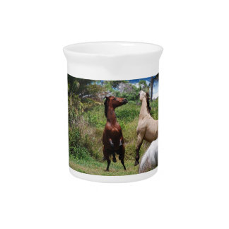 Horse Play Pitcher