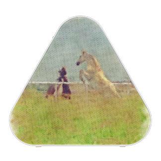 HORSE PLAY SPEAKER