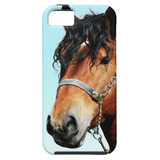 horse.png iPhone 5 cover