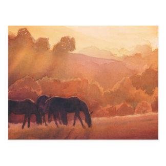 """""""Horse Point"""" Horse Landscape Watercolor Postcard"""