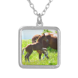 Horse Pony Baby Foal Cute Silver Plated Necklace