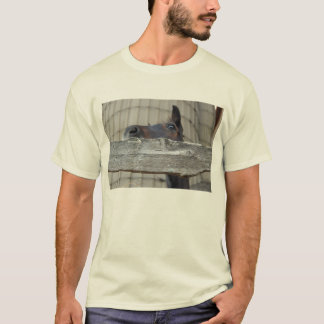 Horse/Pony T-Shirt