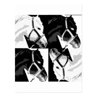 horse pop art postcard