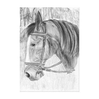 Horse portrait art canvas