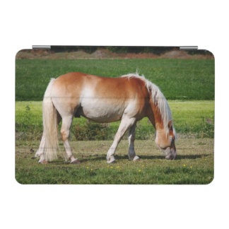 Horse portrait iPad mini cover