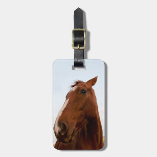 Horse portrait tags for bags