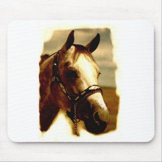 Horse Portrait Mouse Pad