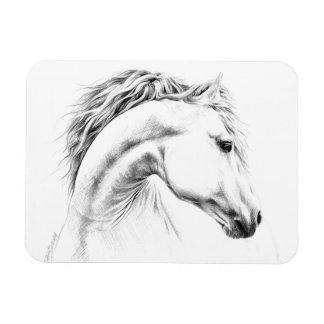 Horse portrait pencil art Photo magnets