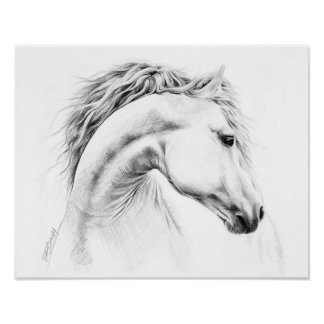 Horse portrait pencil drawing poster
