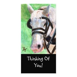Horse Portrait Photo Card