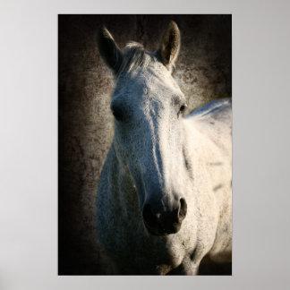 Horse portrait print