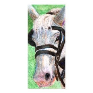 Horse Portrait Rack Card
