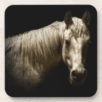 Horse Portrait VI Drink Coaster