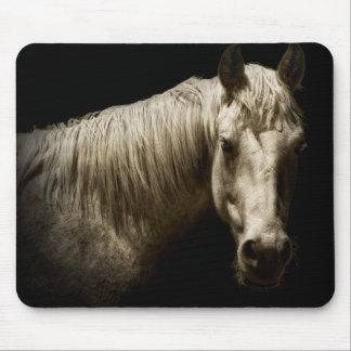 Horse Portrait VI Mouse Pad