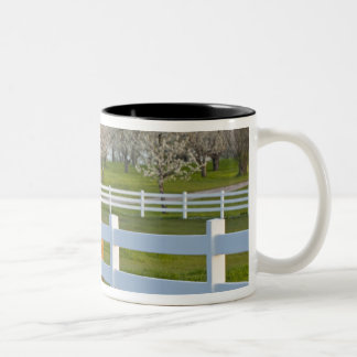 Horse poses by Flathead Cherry orchard near Two-Tone Coffee Mug