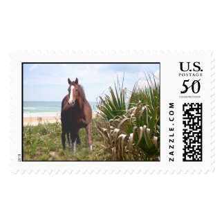 Horse Postage Beach