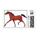 Horse Postage Stamps