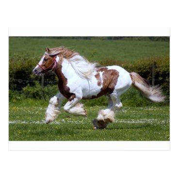 Dragonfight Horse Postcard