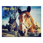 "Horse Poster: ""Hey Girl."" Poster"