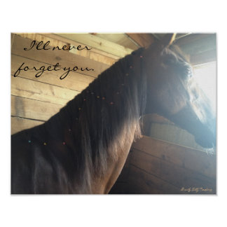 "Horse poster: ""I'll Never Forget You."" Poster"