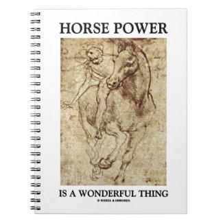 Horse Power Is A Wonderful Thing Leonardo da Vinci Notebooks