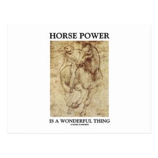 Horse Power Is A Wonderful Thing Leonardo da Vinci Postcard