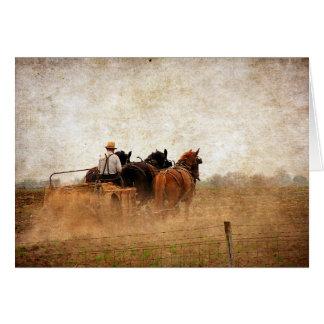 Horse Powered Field Work, Birthday Greeting Card