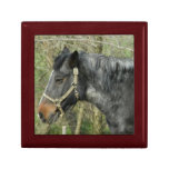 Horse(Profile) Gift Box