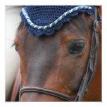 Horse Profile Invitations