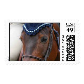 Horse Profile Postage Stamps