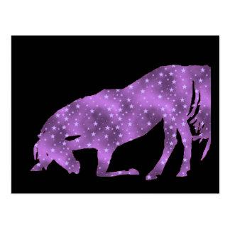 Horse Purple Star Silhouette Post card