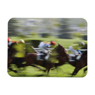 horse race 2 rectangular photo magnet
