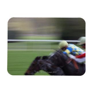 horse race 3 rectangular photo magnet