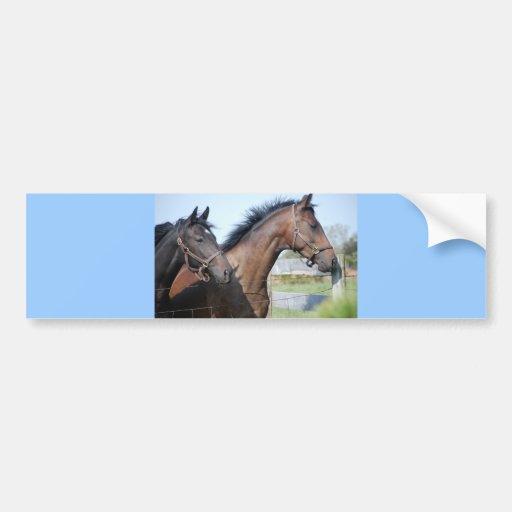 Horse Race Finish Line Car Bumper Sticker