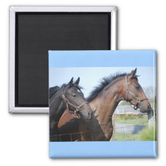 Horse Race Finish Line Magnet