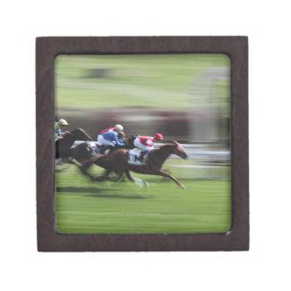 horse race jewelry box