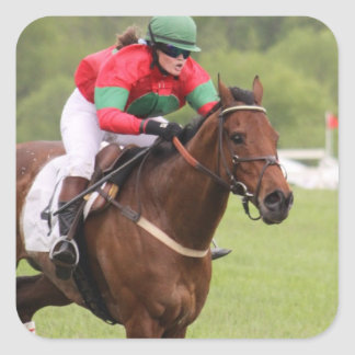 Horse Race Stickers