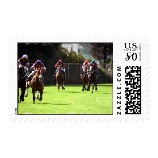 Horse Racing Field Postage Stamp