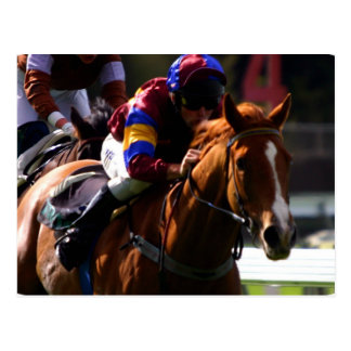 Horse Racing Postcard