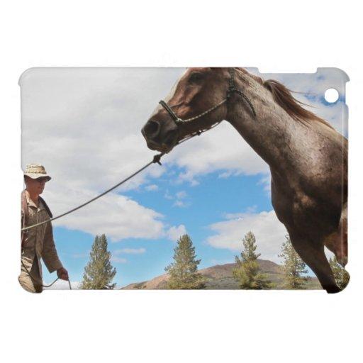 Horse Ranch Farm Destiny Nature Background iPad Mini Covers