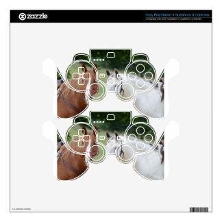 Horse Ranch Farm Destiny Nature Background PS3 Controller Decal