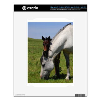Horse Ranch Farm Destiny Nature Background Decal For The NOOK