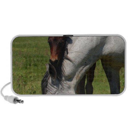 Horse Ranch Farm Destiny Nature Background Laptop Speakers