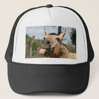 Horse razzberry hat