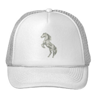 horse rearing hat