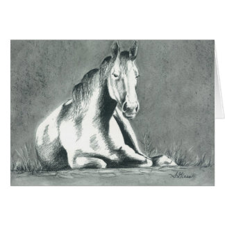'Horse Relaxing' by Sarah Marie Glass Greeting Cards