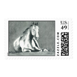 Horse Relaxing Stamps