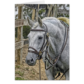 Horse Rescue Greeting Card