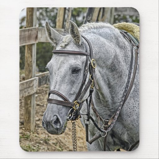 Horse Rescue Mouse Pad